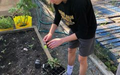 Salesians In Action Cultivate the Seeds of Service
