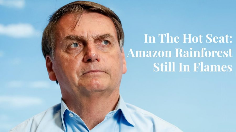 """The hot topic of taking immediate federal action against the fires of the Amazon rainforest has shifted from a question of """"should we"""" to """"how could we"""" as days pass by without an answer from President Bolsonaro (pictured above)."""