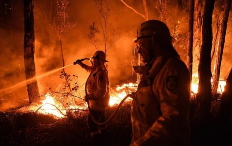 Two Australian firefighters work to quell the raging flames around them.