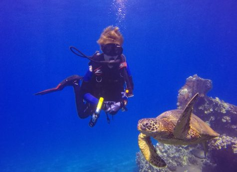 Diving with the Turtles in Maui - August 2018